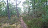 Trail Walk NOISY-SUR-ECOLE - SVG 180801 - Photo 11