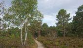 Trail Walk NOISY-SUR-ECOLE - SVG 180801 - Photo 10