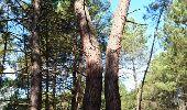 Trail Walk NOISY-SUR-ECOLE - SVG 180801 - Photo 6