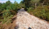 Trail Walk NOISY-SUR-ECOLE - SVG 180801 - Photo 5