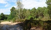 Trail Walk NOISY-SUR-ECOLE - SVG 180801 - Photo 4