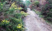 Randonnée V.T.T. MONTAIGUT-SUR-SAVE - Espace VTT FFC de Bouconne- Circuit n° 3 - Forêt de Bouconne - Photo 4