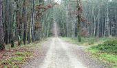Randonnée V.T.T. MONTAIGUT-SUR-SAVE - Espace VTT FFC de Bouconne- Circuit n° 3 - Forêt de Bouconne - Photo 3
