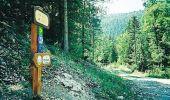 Randonnée V.T.T. LUS-LA-CROIX-HAUTE - Grande Traversée des PréAlpes à VTT : Lus la Croix Haute - Col des Tours - Photo 2