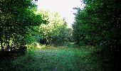 Randonnée Marche SAINT-JEAN-AUX-BOIS - en forêt de Compiègne_19_le Puits d'Antin_les Mares St-Louis_La Muette - Photo 176
