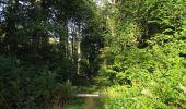 Randonnée Marche SAINT-JEAN-AUX-BOIS - en forêt de Compiègne_19_le Puits d'Antin_les Mares St-Louis_La Muette - Photo 207
