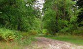 Trail Walk SAINT-JEAN-AUX-BOIS - en forêt de Compiègne_19_le Puits d'Antin_les Mares St-Louis_La Muette - Photo 151