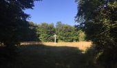 Randonnée Marche SAINT-JEAN-AUX-BOIS - en forêt de Compiègne_19_le Puits d'Antin_les Mares St-Louis_La Muette - Photo 166