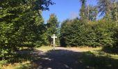 Randonnée Marche SAINT-JEAN-AUX-BOIS - en forêt de Compiègne_19_le Puits d'Antin_les Mares St-Louis_La Muette - Photo 163