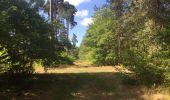 Trail Walk SAINT-JEAN-AUX-BOIS - en forêt de Compiègne_19_le Puits d'Antin_les Mares St-Louis_La Muette - Photo 75