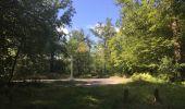Randonnée Marche SAINT-JEAN-AUX-BOIS - en forêt de Compiègne_19_le Puits d'Antin_les Mares St-Louis_La Muette - Photo 146