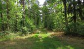Randonnée Marche SAINT-JEAN-AUX-BOIS - en forêt de Compiègne_19_le Puits d'Antin_les Mares St-Louis_La Muette - Photo 35