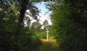 Trail Walk SAINT-JEAN-AUX-BOIS - en forêt de Compiègne_19_le Puits d'Antin_les Mares St-Louis_La Muette - Photo 113