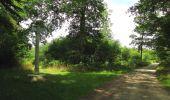 Randonnée Marche SAINT-JEAN-AUX-BOIS - en forêt de Compiègne_19_le Puits d'Antin_les Mares St-Louis_La Muette - Photo 81