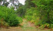 Randonnée Marche SAINT-JEAN-AUX-BOIS - en forêt de Compiègne_19_le Puits d'Antin_les Mares St-Louis_La Muette - Photo 109