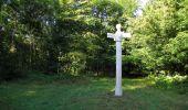Trail Walk SAINT-JEAN-AUX-BOIS - en forêt de Compiègne_19_le Puits d'Antin_les Mares St-Louis_La Muette - Photo 43