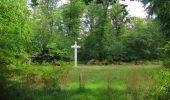 Randonnée Marche SAINT-JEAN-AUX-BOIS - en forêt de Compiègne_19_le Puits d'Antin_les Mares St-Louis_La Muette - Photo 124