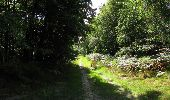 Randonnée Marche SAINT-JEAN-AUX-BOIS - en forêt de Compiègne_19_le Puits d'Antin_les Mares St-Louis_La Muette - Photo 133