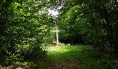 Randonnée Marche SAINT-JEAN-AUX-BOIS - en forêt de Compiègne_19_le Puits d'Antin_les Mares St-Louis_La Muette - Photo 100