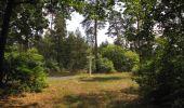 Trail Walk SAINT-JEAN-AUX-BOIS - en forêt de Compiègne_19_le Puits d'Antin_les Mares St-Louis_La Muette - Photo 1