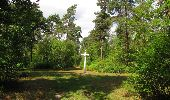 Randonnée Marche SAINT-JEAN-AUX-BOIS - en forêt de Compiègne_19_le Puits d'Antin_les Mares St-Louis_La Muette - Photo 34