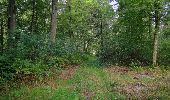 Randonnée Marche SAINT-JEAN-AUX-BOIS - en forêt de Compiègne_19_le Puits d'Antin_les Mares St-Louis_La Muette - Photo 140