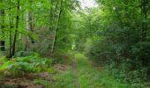 Trail Walk SAINT-JEAN-AUX-BOIS - en forêt de Compiègne_19_le Puits d'Antin_les Mares St-Louis_La Muette - Photo 86