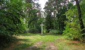Randonnée Marche SAINT-JEAN-AUX-BOIS - en forêt de Compiègne_19_le Puits d'Antin_les Mares St-Louis_La Muette - Photo 37