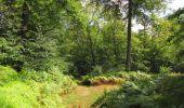 Randonnée Marche SAINT-JEAN-AUX-BOIS - en forêt de Compiègne_19_le Puits d'Antin_les Mares St-Louis_La Muette - Photo 118