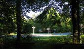 Randonnée Marche SAINT-JEAN-AUX-BOIS - en forêt de Compiègne_19_le Puits d'Antin_les Mares St-Louis_La Muette - Photo 196