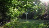 Randonnée Marche SAINT-JEAN-AUX-BOIS - en forêt de Compiègne_19_le Puits d'Antin_les Mares St-Louis_La Muette - Photo 179