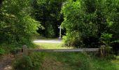 Randonnée Marche SAINT-JEAN-AUX-BOIS - en forêt de Compiègne_19_le Puits d'Antin_les Mares St-Louis_La Muette - Photo 94