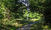 Randonnée Marche SAINT-JEAN-AUX-BOIS - en forêt de Compiègne_19_le Puits d'Antin_les Mares St-Louis_La Muette - Photo 169