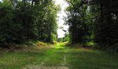 Randonnée Marche SAINT-JEAN-AUX-BOIS - en forêt de Compiègne_19_le Puits d'Antin_les Mares St-Louis_La Muette - Photo 126