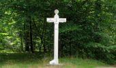 Randonnée Marche SAINT-JEAN-AUX-BOIS - en forêt de Compiègne_19_le Puits d'Antin_les Mares St-Louis_La Muette - Photo 92