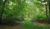 Randonnée Marche SAINT-JEAN-AUX-BOIS - en forêt de Compiègne_19_le Puits d'Antin_les Mares St-Louis_La Muette - Photo 142