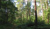 Randonnée Marche SAINT-JEAN-AUX-BOIS - en forêt de Compiègne_19_le Puits d'Antin_les Mares St-Louis_La Muette - Photo 155