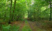 Randonnée Marche SAINT-JEAN-AUX-BOIS - en forêt de Compiègne_19_le Puits d'Antin_les Mares St-Louis_La Muette - Photo 145