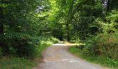 Randonnée Marche SAINT-JEAN-AUX-BOIS - en forêt de Compiègne_19_le Puits d'Antin_les Mares St-Louis_La Muette - Photo 91
