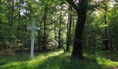 Randonnée Marche SAINT-JEAN-AUX-BOIS - en forêt de Compiègne_19_le Puits d'Antin_les Mares St-Louis_La Muette - Photo 194
