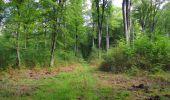 Randonnée Marche SAINT-JEAN-AUX-BOIS - en forêt de Compiègne_19_le Puits d'Antin_les Mares St-Louis_La Muette - Photo 141