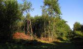 Trail Walk SAINT-JEAN-AUX-BOIS - en forêt de Compiègne_19_le Puits d'Antin_les Mares St-Louis_La Muette - Photo 36