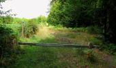 Trail Walk SAINT-JEAN-AUX-BOIS - en forêt de Compiègne_19_le Puits d'Antin_les Mares St-Louis_La Muette - Photo 127