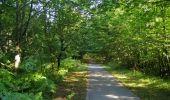 Randonnée Marche SAINT-JEAN-AUX-BOIS - en forêt de Compiègne_19_le Puits d'Antin_les Mares St-Louis_La Muette - Photo 183