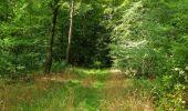 Randonnée Marche SAINT-JEAN-AUX-BOIS - en forêt de Compiègne_19_le Puits d'Antin_les Mares St-Louis_La Muette - Photo 123