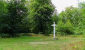 Trail Walk SAINT-JEAN-AUX-BOIS - en forêt de Compiègne_19_le Puits d'Antin_les Mares St-Louis_La Muette - Photo 97
