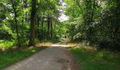 Trail Walk SAINT-JEAN-AUX-BOIS - en forêt de Compiègne_19_le Puits d'Antin_les Mares St-Louis_La Muette - Photo 137