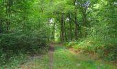 Randonnée Marche SAINT-JEAN-AUX-BOIS - en forêt de Compiègne_19_le Puits d'Antin_les Mares St-Louis_La Muette - Photo 139