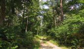 Randonnée Marche SAINT-JEAN-AUX-BOIS - en forêt de Compiègne_19_le Puits d'Antin_les Mares St-Louis_La Muette - Photo 31