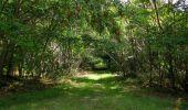 Trail Walk SAINT-JEAN-AUX-BOIS - en forêt de Compiègne_19_le Puits d'Antin_les Mares St-Louis_La Muette - Photo 90